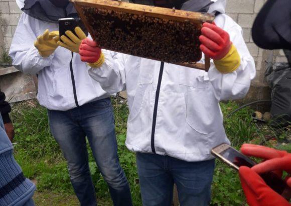 Corso di avviamento all'apicoltura – edizione di Jenin