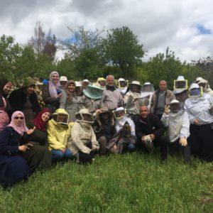 Nuovi apicoltori crescono